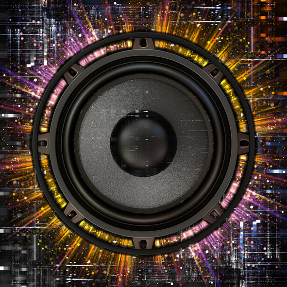 This is an image of a subwoofer