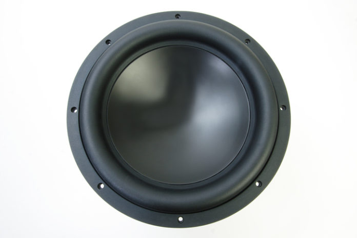 This is an image of a 12 inch subwoofer